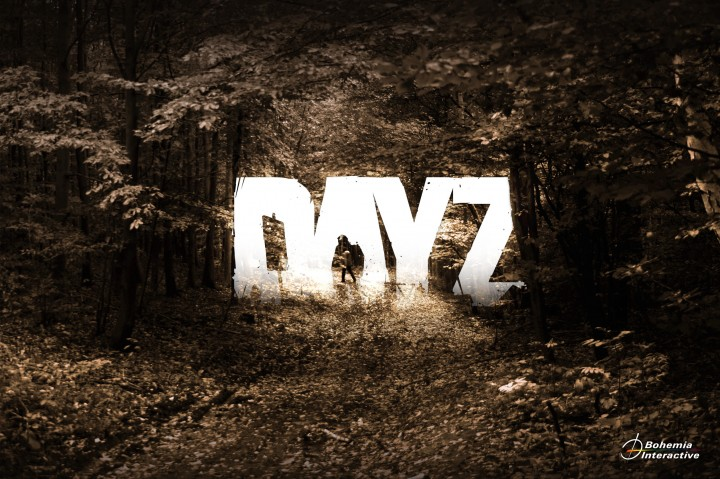 DayZ Tips on how to survive longer