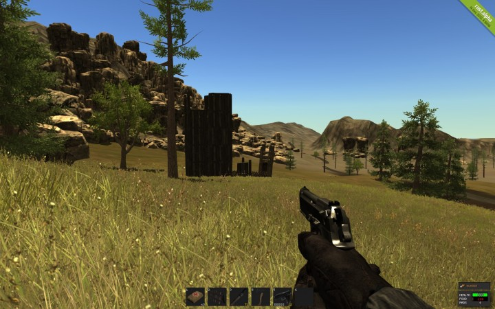 Rust state of the game and development plans