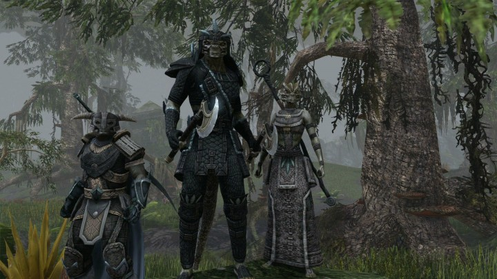 ZeniMax gives details and exact launch times for Elder Scrolls Online
