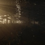 The Forest, A Survival Horror Game We Have Been Waiting For