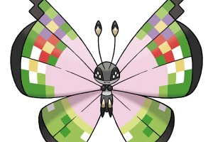 fancy-pattern-vivillon-1
