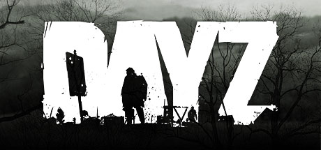 DayZ producer on concerns regarding the game's development