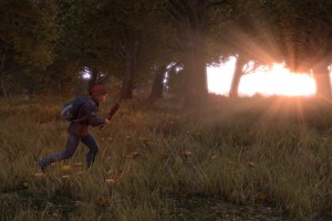 DayZ 2015 Roadmap and price changes